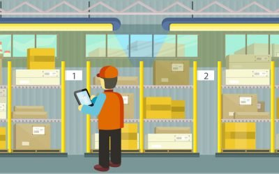 Trasabilitate, inventariere automata si raportare rapide pentru Complex Comercial Fibec Holding, Campina