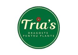 Trias Logo